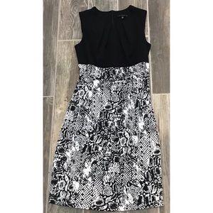 Tiana B. Career Dress